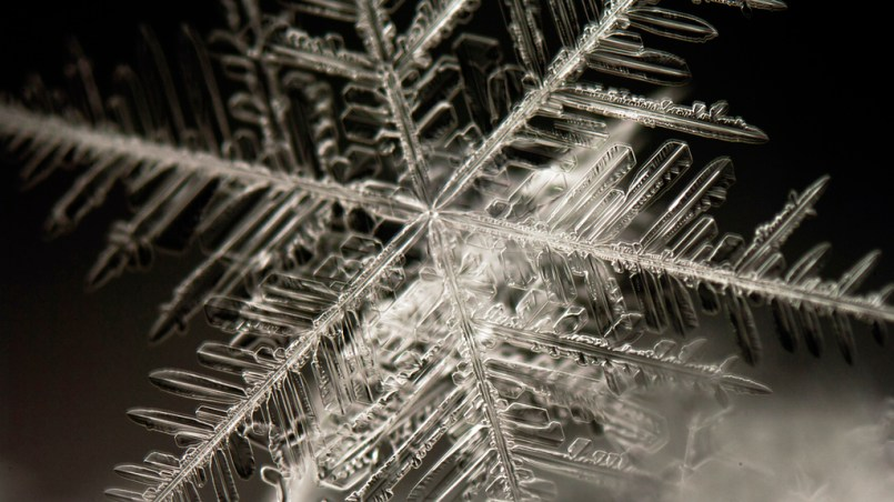 Macro photography of a snowflake