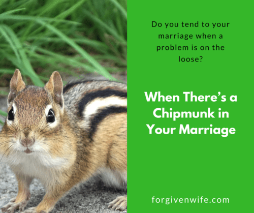 Do you tend to your marriage when a problem is on the loose?