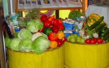 Dumpstered_vegetables-370×230