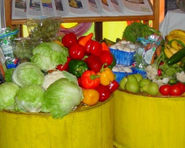 Dumpstered_vegetables-625×500