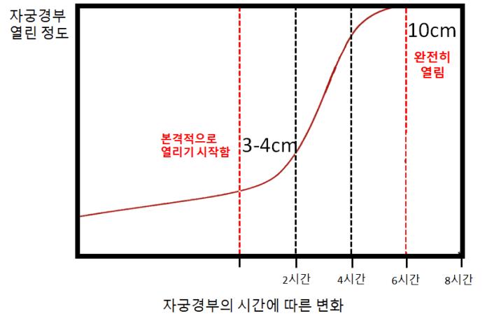 프리드만 곡선.jpg