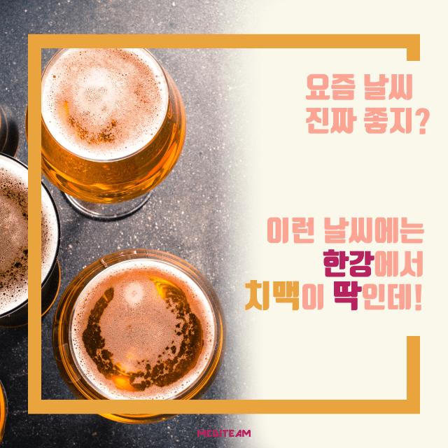 임신준비 술 맥주 (4).png