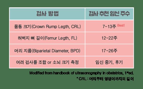 임신 6주, 임신 주수별 아기 크기 측정