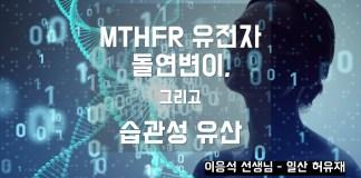 MTHFR 유전자 돌연변이 검사
