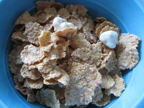 Review For Kellogg's FiberPlus Cereals (5/5)