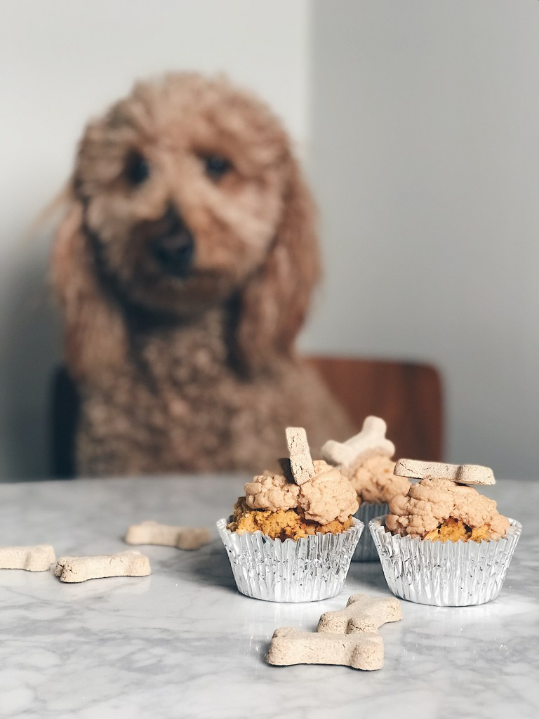 Gluten Free Pup Cakes Lifestyle Fork Broccoli