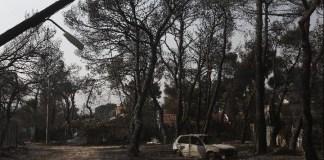 Χαρδαλιάς-για-φωτιά-στη-Βαρυμπόμπη:-Κάηκαν-12.500-στρέμματα-–-Οι-πρώτες-εκτιμήσεις-για-τις-ζημιές
