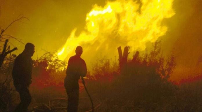 Πεντέλη-1995:-Η-φωτιά-που-«έπνιξε»-Πικέρμι,-Παλλήνη,-Ντράφι-&-Ανθούσα-για-3-μέρες!-(βίντεο)