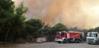 Πολιτική-Προστασία-και-Εθελοντές-Δασοπυροσβέστες-Βύρωνα-έδωσαν-μάχη-με-τις-φλόγες-το-καλοκαίρι