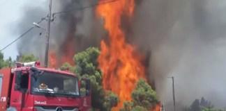 Υπό-έλεγχο-η-φωτιά-στα-σύνορα-Μαρκοπούλου-Βραυρώνας-–-Πως-ξεκίνησε
