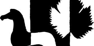 ΠΕΡΙΛΗΨΗ-ΠΡΟΚΗΡΥΞΗΣ-ΔΗΜΟΣΙΟΥ-ΠΛΕΙΟΔΟΤΙΚΟΥ-ΔΙΑΓΩΝΙΣΜΟΥ-ΓΙΑ-ΤΗ-ΜΙΣΘΩΣΗ-ΤΟΥ-ΣΧΟΛΙΚΟΥ-ΚΥΛΙΚΕΙΟΥ-ΤΟΥ-1ουΔΗΜΟΤΙΚΟΥ-ΣΧΟΛΕΙΟΥ-ΠΟΡΤΟ-ΡΑΦΤΗ