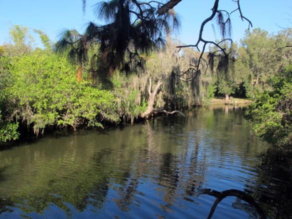 The Estero River winds through the park