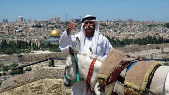 man and donkey s