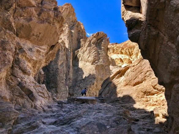 Dramatically sculpted yellow and grey walls of Golden Canyon