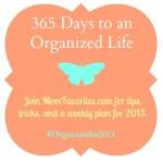 #Organizedin2013: Beginning with Refrigerator and Pantry Organization
