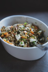 lentils-and-mozzarella_feast-cookbook-2