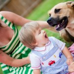 Canine DNA Testing – What Will You Discover?