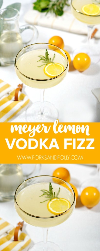"Our Meyer Lemon Vodka Fizz is the perfect way to toast to the end of winter!  Sweet and floral, with the perfect amount of ""bite"" you may just want the cold weather to hang on just a tad longer so you can warm up from the inside out with this cocktail."