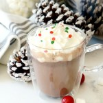 Rich & Creamy Slow Cooker Hot Cocoa