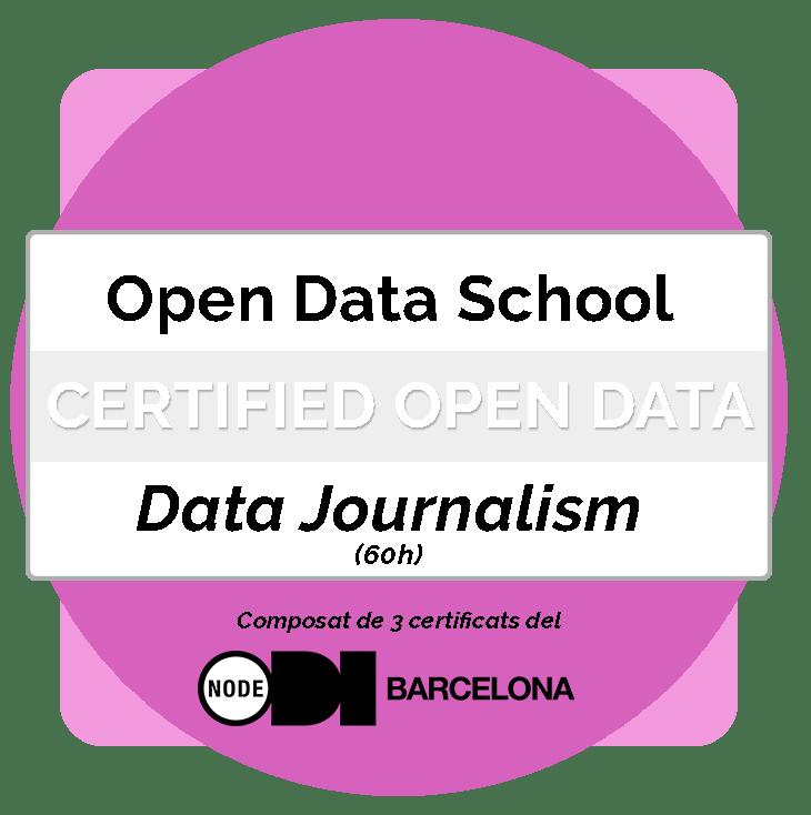 Titulació Professional en Periodisme de Dades