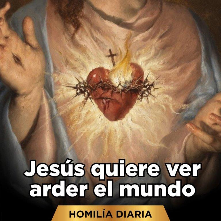 [Homilía Diaria] Jesús quiere ver arder el mundo