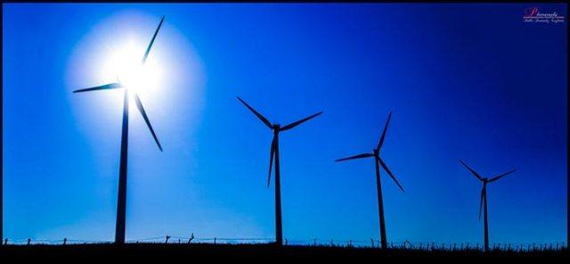 7 cursos gratis de medioambiente