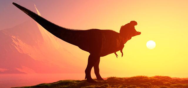 Cursos de Paleontología Gratis
