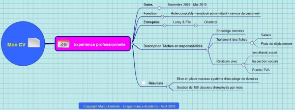 Carte mentale montrant les détails d'une partie de CV : le parcours professionnel