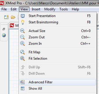 Mise en évidence de certains marqueurs de la carte conceptuelle Procédures dans XMind