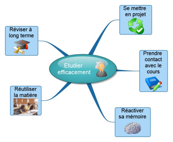 Carte mentale Novamind : description de la méthode comment étudier efficacement en 5 étapes