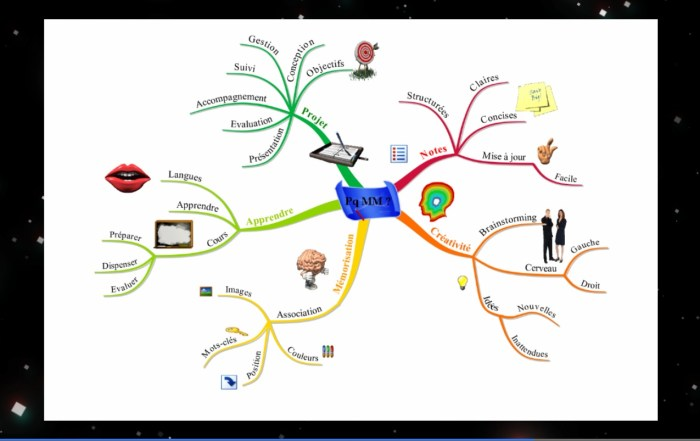 Mindmap réalisée avec iMindMap le logiciel de Tony Buzan