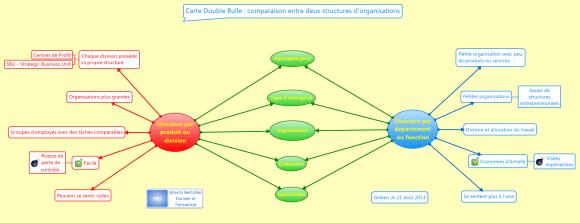 Carte mentale à double bulle utilisée pour étudier points communs et différences entre deux organisations