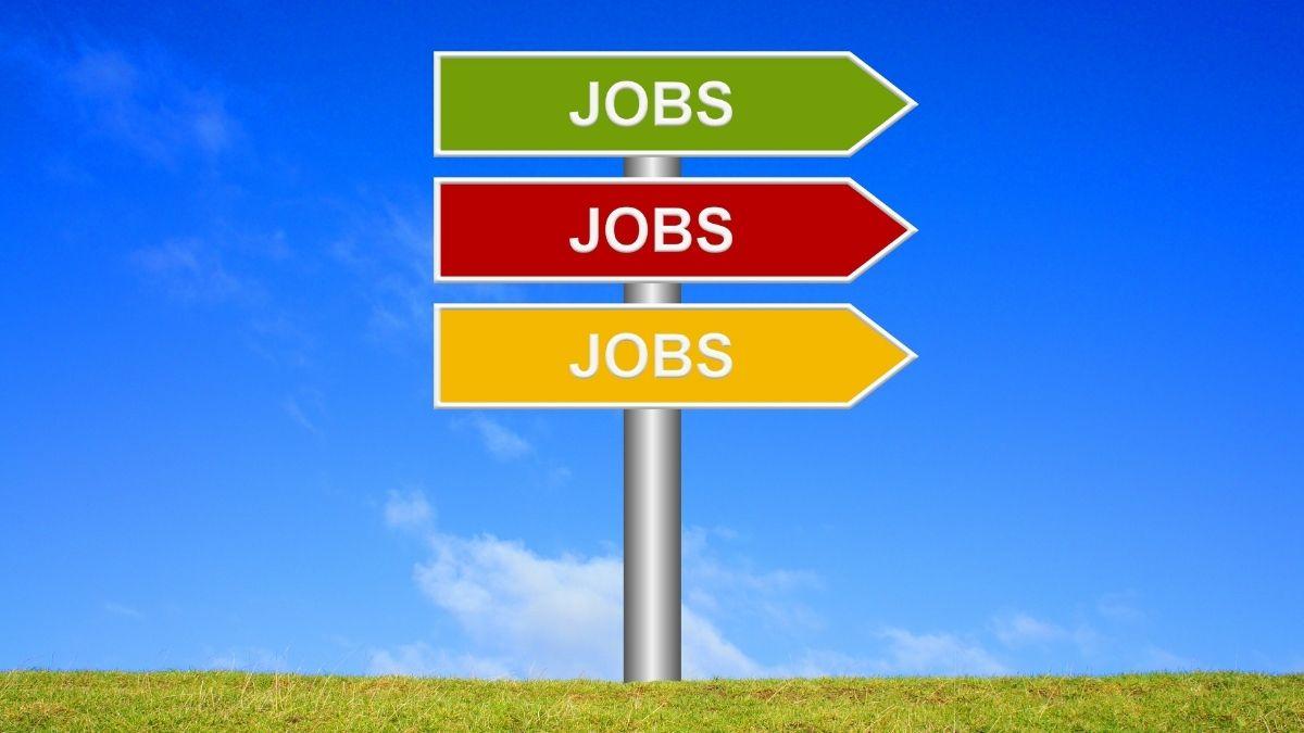 Postuler pour un emploi pendant les vacances d'été ? Oui, les opportunités sont plus nombreuses que vous croyez