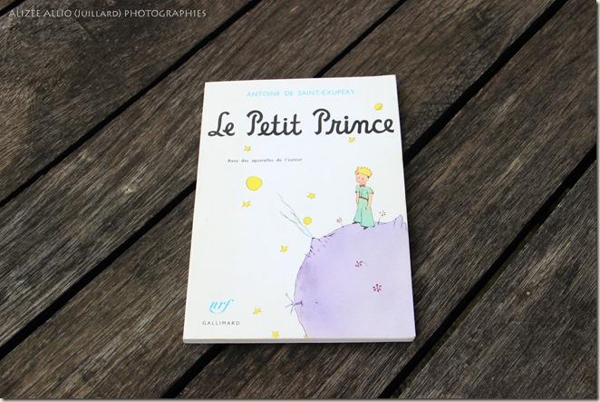 chronique Le petit prince Antoine de Saint Exupery 2
