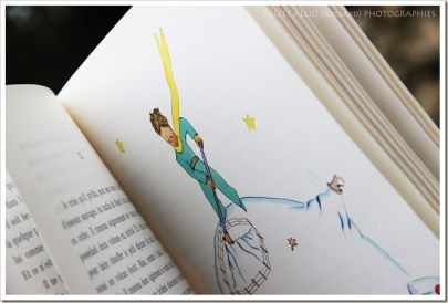 chronique Le petit prince Antoine de Saint Exupery