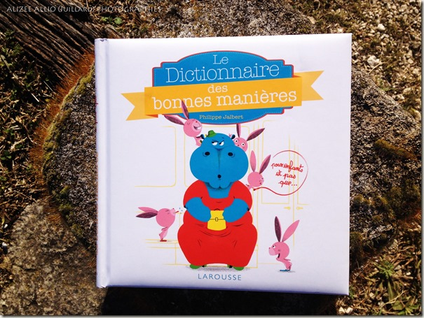 le dictionnaire des bonnes manières Larousse Jeunesse Savoir vivre et politesse (1) copie