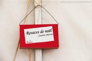 Rosaces-de-Noël