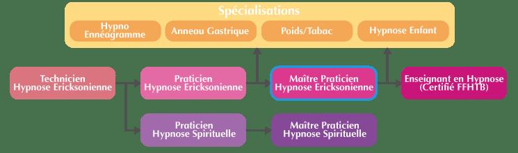 Organigramme Maître Praticien Hypnose Ericksonienne