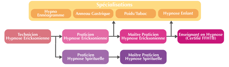Organigramme Formation Hypnose Psynapse