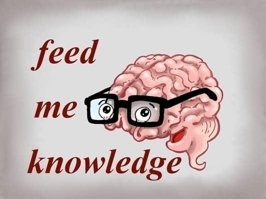 Formation Rédaction Web | Témoignage d'une Boulimique du Cerveau
