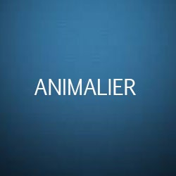 Formation Métiers animaliers