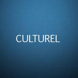 Formation Secteur Culturel