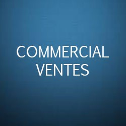 Formation commerciale vente