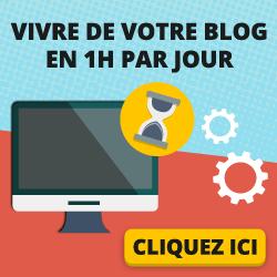 vivreblog250x250 - Qu'est ce que le web-marketing et comment en faire son métier ?