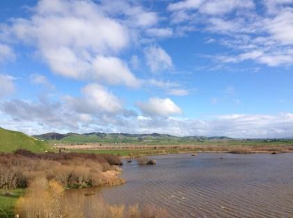 This is Lake Waikare