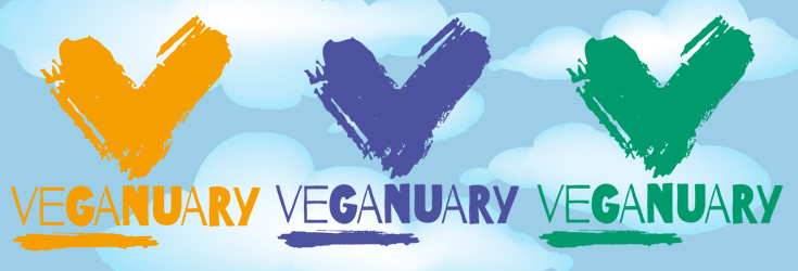 VEGANUARY 2017 | The Conclusion