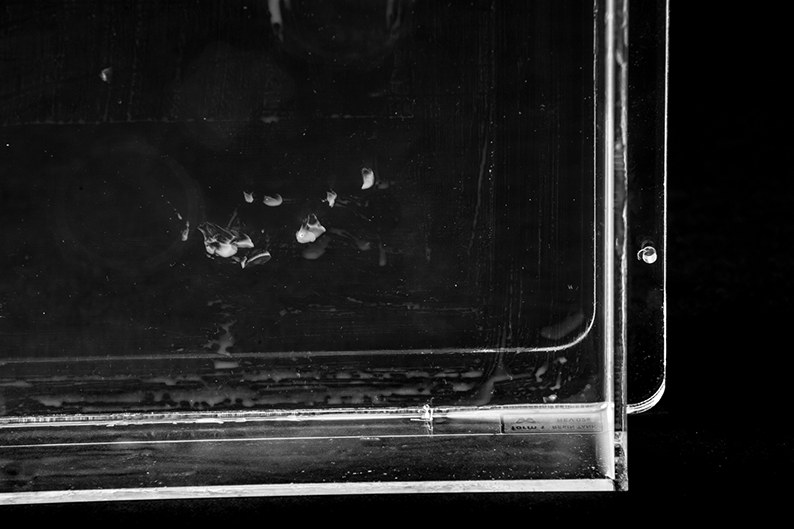 Gouged resin tank, close-up