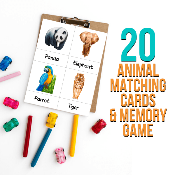 Bilingual Montessori Animal Matching Cards And Memory Game