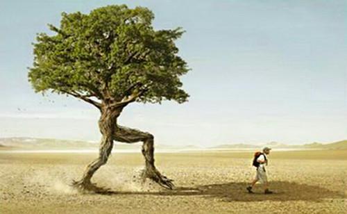 El-arbol-genealogico-1