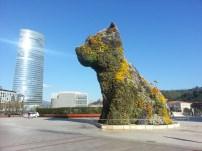 04 Bilbao puppy